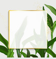 greenery palm leaves and gold frame design vector image vector image