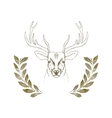 hand drawn deer head with horns vector image vector image