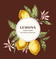 lemon hand drawn circle frame template vector image vector image