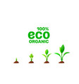plant growth stages icon on a white background vector image