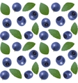 Seamless blueberry background vector image