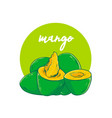 avocado mango hand drawn vector image vector image