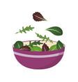 bowl fresh mix salad leaves arugula vector image