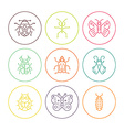 Bugs in circles vector image vector image