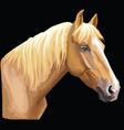 colorful horse portrait-7 vector image