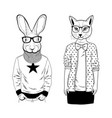 couple of domestic cat and wild rabbit vector image