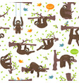 funny cartoon sloths hanging from the trees vector image