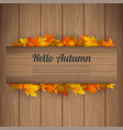 hello autumn background with falling autumn vector image vector image