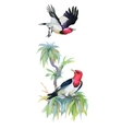 Watercolor colorful Birds and branch with green vector image