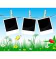 Photo frames on the summer background vector image