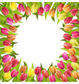 circle frame with tulips red and yellow flowers vector image vector image