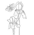 drawing natural background with flowers vector image