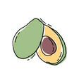 avocado slice hand drawn tropical summer fruit vector image