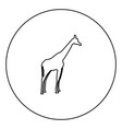 giraffe black icon in circle outline vector image