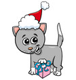 kitten with christmas gift cartoon vector image