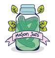 mason jar cartoon vector image