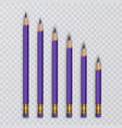 set of pencils with eraser set of different size vector image