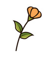 cute flower isolated icon vector image