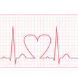 ECG - electrocardiogram on red grid vector image
