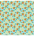 Fruits mandarin seamless patterns vector image vector image