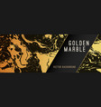 gold marble background with banner vector image vector image