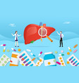 human liver medicine health pills drug capsule vector image vector image