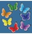 multi-colored butterflies on a blue background vector image