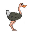 ostrich on white background cute cartoon vector image