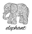 stylized elephant with decorative botanical vector image vector image