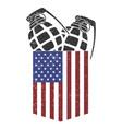 american pocket grenade - granade vector image vector image