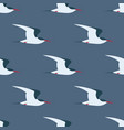 flying arctic tern seamless pattern vector image vector image