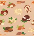 nut nutshell of hazelnut or walnut vector image