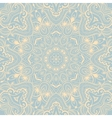 Ornamental round lace background 2 vector image vector image