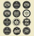 set retro labels badges vector image
