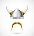 Viking accessories vector image