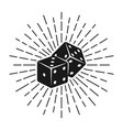 dice for gambling with rays vector image vector image