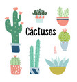 set cute hand drawn cactus and succulent plants vector image