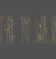 bamboo luxury gold line design on dark background vector image