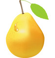 drawing of yellow pear fruit vector image