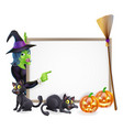 halloween witch background sign vector image vector image