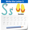 letter s tracing alphabet worksheets vector image