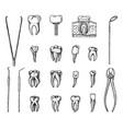 molar teeth enamel dental set instruments vector image vector image