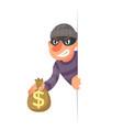 stole money evil greedily thief cartoon rogue vector image vector image