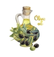Watercolor olive collection vector image