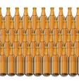 Glass Beer Brown Bottle vector image