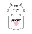 adopt me cat sitting in pocket pink heart vector image vector image