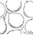 bergamot fruit pattern on white background vector image