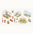 Bundle of various glass greenhouses with plants