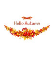 colorful fall autumn leaves and berries vector image vector image