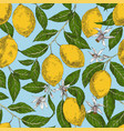 lemons hand drawn seamless retro pattern vector image vector image